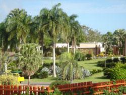 Национальный ботанический сад в Санто-Доминго