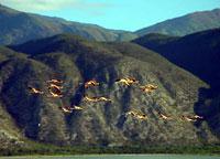 Озеро Энрикийо